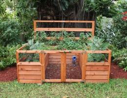 family garden 1