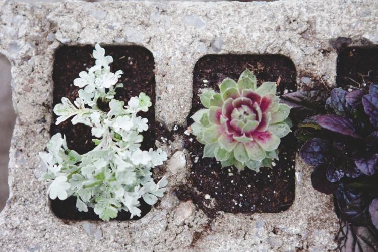 cinderblock garden 1