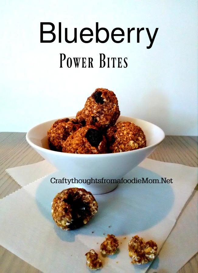 Blueberry Power Bites